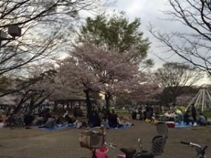 2016.4.2名城公園
